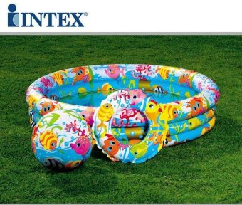 Bộ bể bơi + bóng + phao Intex