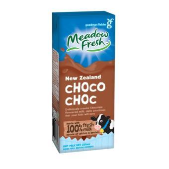 Thùng 24 hộp sữa tươi tiệt trùng Meadow Fresh từ New Zealand 250ml (Socola)