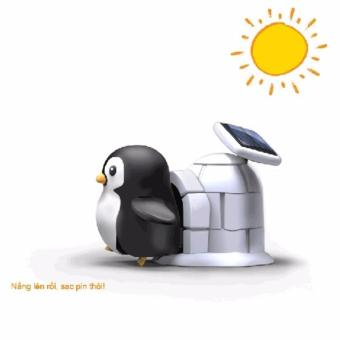 Bộ lắp ráp năng lượng mặt trời - Chim cánh cụt (Penguin Life Solar Kit)