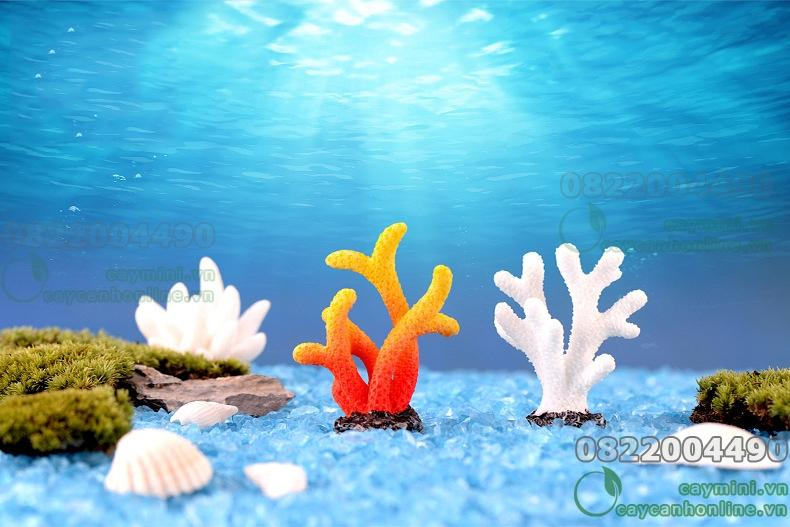 San hô - Trang trí tiểu cảnh bể cá, mô hình san hô. trang trí cây cảnh, sân vườn