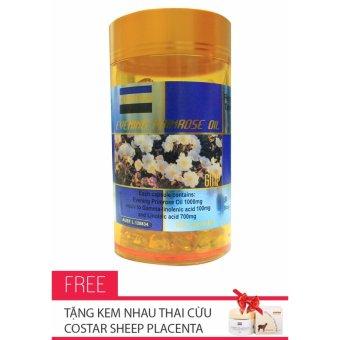 Viên Nang Mềm Tinh Dầu Hoa Anh Thảo - Evening Primrose Oil Costar 100 Viên + Tặng kèm kem nhau thai cừu Costar Sheep Placenta