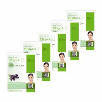 Bộ 5 x Mặt nạ dưỡng da tinh chất thảo mộc Dermal Herb Collagen Essence Mask 23g