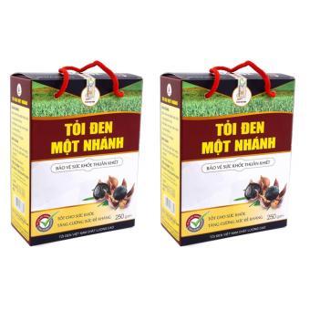 Bộ 2 hộp tỏi đen một nhánh Tỏi đen Việt Nam 250g