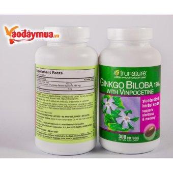 Viên uống bổ não - tăng tuần hoàn máu Ginkgo Biloba 300 viên