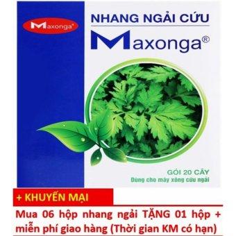 Bộ 7 hộp 20 điếu nhang Ngải Cứu Maxonga (Mua 06 Tặng 01)