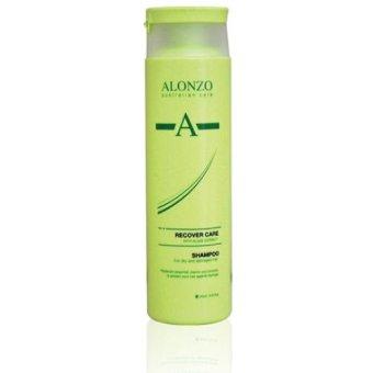Mua Dầu gội Alonzo Recover phục hồi tóc khô và hư tổn 250ml giá tốt nhất
