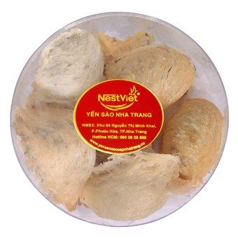 Mua Bộ 1 hộp yến thô ngyên tổ còn lông loại 1 Yến Sào Nha Trang NestViet 0.1Kg giá tốt nhất