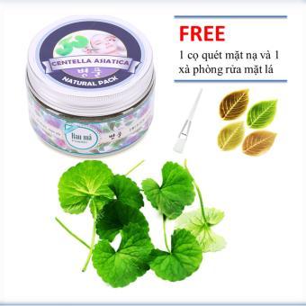Bột đắp mặt nạ rau má Ecolife 100ml , tặng cọ đắp mặt và xà phòng lá rửa mặt, trị mụn, dưỡng da, hạn chế mụn trứng cá và giúp liền sẹo trên da