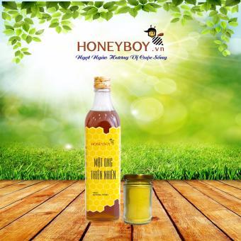 Mật Ong Thiên Nhiên Honeyboy 500Ml Tặng Tinh Nghệ 40G