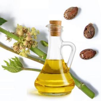Dầu thầu dầu - Castor oil - dưỡng mi, tóc, da, làm mỹ phẩm, 100ml, giảm 20% (Pháp)