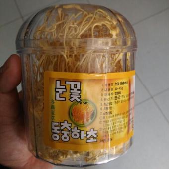 Hộp Đông Trùng Hạ Thảo bông tuyết Hàn Quốc sấy khô 40g (nguyên chất 100%)