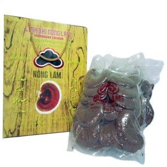 Nấm Linh Chi Nông Lâm 500g