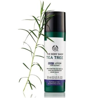 Kem dưỡng ẩm ban đêm THE BODY SHOP Tea Tree Night Lotion 30ml