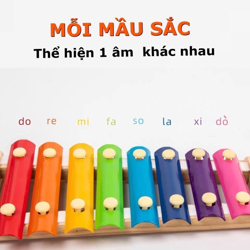 Đồ Chơi Trẻ Em Đàn Xylophone 8 Âm Bằng Gỗ Phát Triển Trí Não Và Cảm Quan Cho Bé Gái Và Trai Từ 1 Tuổi Trở Lên. 3