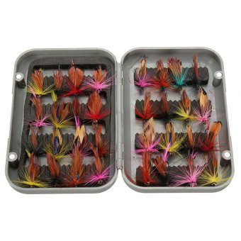 32pcs Fishing Lure Artificial Insect Bait Trout hooks Tackle withCase - INTL