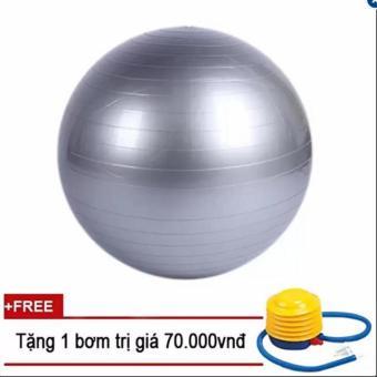 Bóng Yoga cao cấp+ Kèm bộ dụng cụ bơm hơi TPS Trơn 65CM (Màu Ghi)