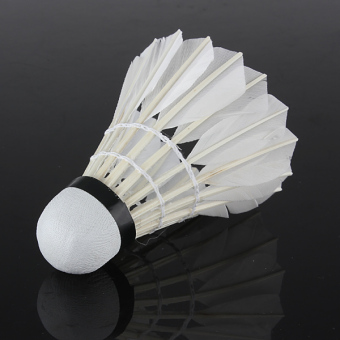 6 x Goose Feather Shuttlecocks Birdies White Badminton Ball Game Sport Training - Intl