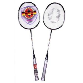 Bộ vợt cầu lông Haotian 7725