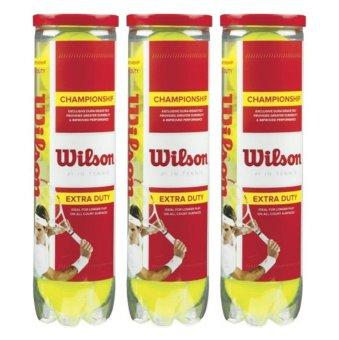 Bộ 3 hộp bóng Tennis Wilson Champion 4 quả / hộp