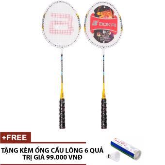 Cặp vợt cầu lông SL117 (Tặng kèm Ống cầu 6 quả)