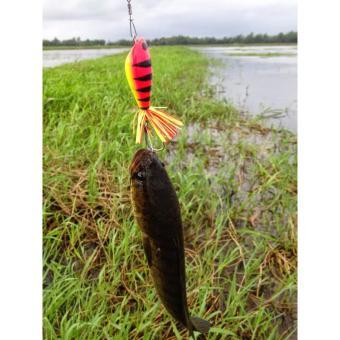 Mồi Giả Câu Cá Lóc Hàng Thái Lan ( mồi nổi)