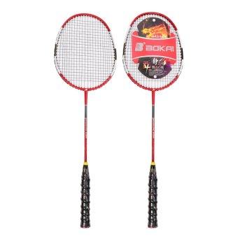 Cặp vợt cầu lông SL9288