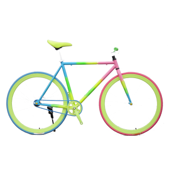 Xe đạp Fixed Gear Single Speed (Bảy Màu)