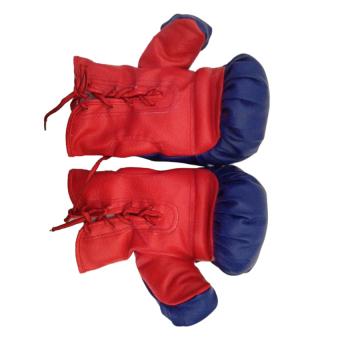 Găng tay đấm boxing nhỏ ZENO 7