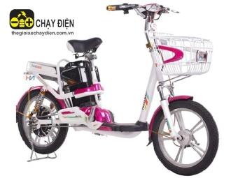 Xe đạp điện Ngọc Hà N3