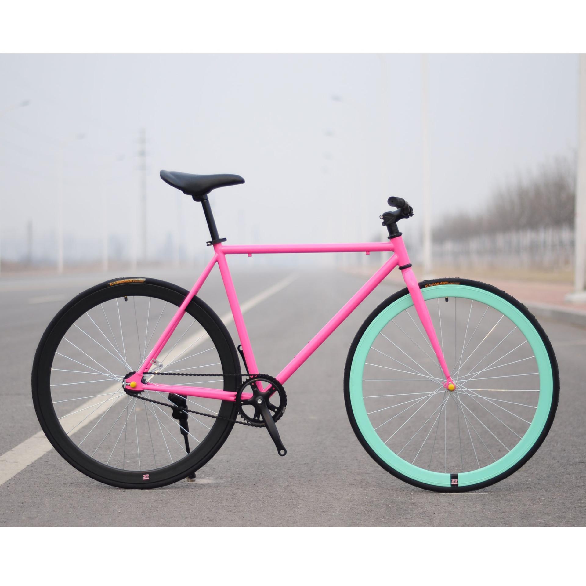Xe đạp Fixed Gear Single Speed (Hồng vành đen xanh)