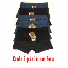 Bộ 5 quần lót nam Boxer trơn siêu thoáng mát SN02