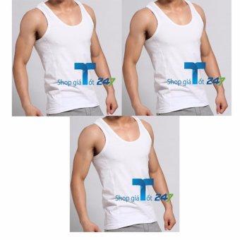Combo 3 áo ba lỗ coton cho nam Khỏe khoắn, đầy nam tính ( Trắng)