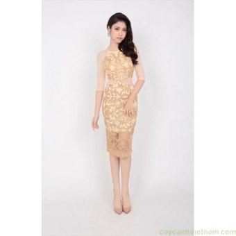 Đầm ren kim tuyến nhũ phối lưới cao cấp màu be   Đầm ren đẹp