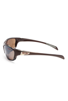 Kính mát unisex Double Shield 302 BROWN (Nâu)