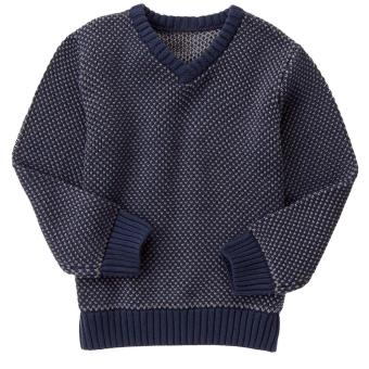 Áo Len Gymboree Two Tone Knit Sweater