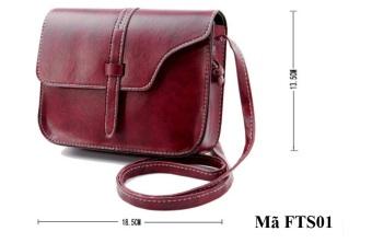Túi đeo mini nữ FTS01 (Nâu)