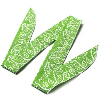 Summer Ice Cool Scarf Neck Cooler Wrap Non Toxic Powder Wrist Cooling Headband Green New - intl