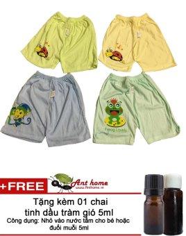 Combo 2 quần đùi cotton cho bé trai từ 2-5 tuổi (Mầu sắc bất kỳ) + Tặng 01 chai tinh dầu tràm gió 5ml