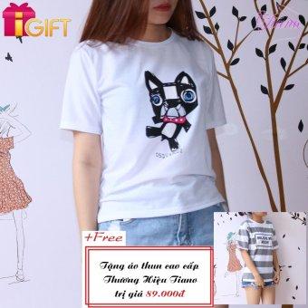 Áo Thun Nữ Tay Ngắn In Hình Con Mèo Dsquared 2 Năng Động Tiano Fashion LV161 ( Màu Trắng ) + Tặng Áo Thun Nữ Tay Ngắn In Hình Believe Me Meow