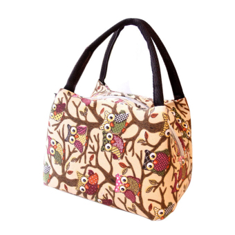 Owl Handbag Lunch Bag Multipurpose for Travel Shopping Camping Office School