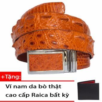 Dây Thắt Lưng Nam Da Cá Sấu Gai Lưng – RAICA (Vàng)