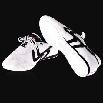 New Unisex Taekwondo Kung Fu Karate Tai Chi Training Shoes Footwear Sneakers - intl