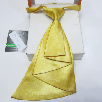 Cà Vạt Nam Nữ Facioshop Cg24