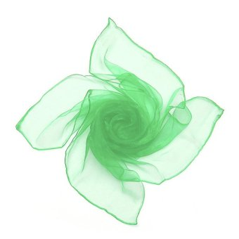 20 Colors Fashion Soft Women Girls Chiffon Silk Slim Square Scarf Bandana green - intl