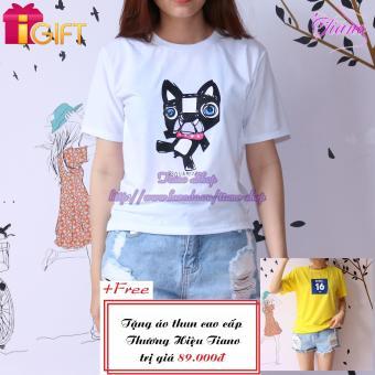 Áo Thun Nữ Tay Ngắn In Hình Con Mèo Dsquared 2 Năng Động Tiano Fashion LV161 ( Màu Trắng ) + Tặng Áo Thun Nữ Tay Ngắn In Hình Rebel 16 Ken Cực Cool Tiano Fashion