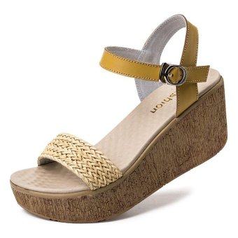Women Sandals 2017 Summer New Open Toe Fish Head Fashion platform High Heels Wedge Sandals female shoes women shoes - intl