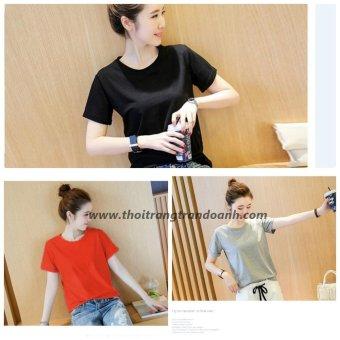 Combo 3 Áo Thun Trơn Cao Cấp Phong Cách Hàn Quốc BB Store