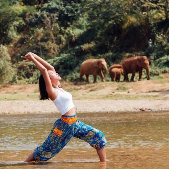 Quần BLUE TRIBAL ELEPHANT HAREM PANTS màu xanh có túi size S