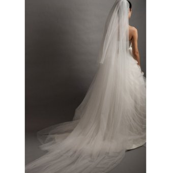 1 Layer 2-5m Seaside Cathedral Bridal Wedding Photo Party Long Veil With Comb Beige (Intl) - intl