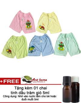 Quần đùi cotton cho bé gái từ 2-5 tuổi (Mầu sắc bất kỳ) + Tặng 01 chai tinh dầu tràm gió 5ml
